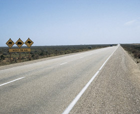 Eyre Highway - Accommodation QLD