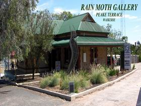 Rain Moth Gallery - Accommodation QLD