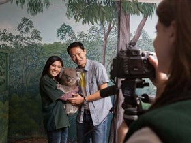 Cleland Wildlife Park - Accommodation QLD