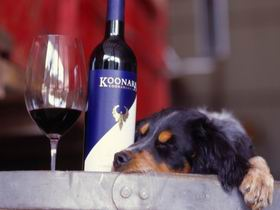 Koonara Wines - Accommodation QLD