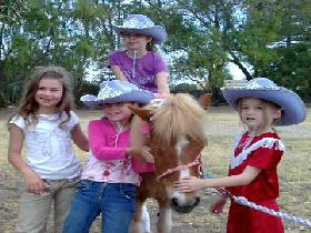 Amberainbow Pony Rides - Accommodation QLD