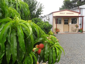 Gully Gardens - Accommodation QLD