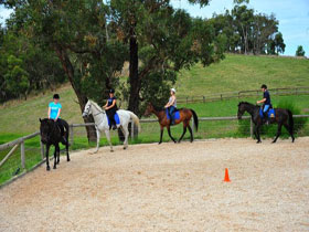 Megan Jones Riding School and Trail Rides - Accommodation QLD