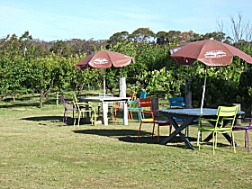 Cerise Brook Orchard  Family Golf - Accommodation QLD