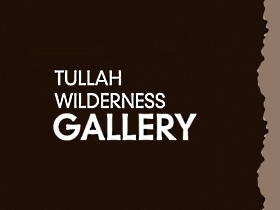 Tullah Wilderness Gallery - Accommodation QLD