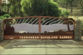 Tasmanian Bushland Garden - Accommodation QLD