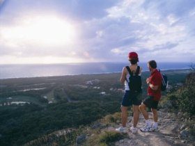 Mount Coolum National Park - Accommodation QLD
