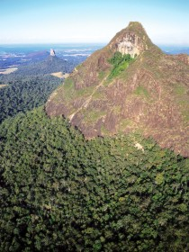 Mount Beerwah Track - Accommodation QLD