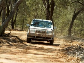Ward River 4x4 Stock Route Trail - Accommodation QLD