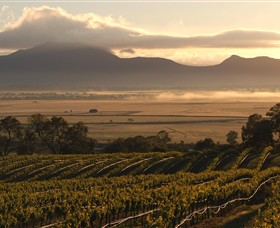 Montara Wines - Accommodation QLD