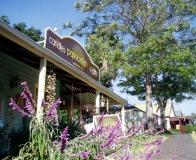 Passionfish Candles - Accommodation QLD