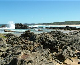 Coastal Walks - Bermagui