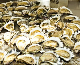 Wheelers Oysters - Accommodation QLD
