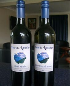 Thunder Ridge Wines - Accommodation QLD