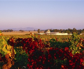 Morris Wines - Accommodation QLD