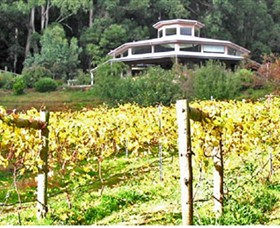 Peveril Vineyard/Beechy Berries - Accommodation QLD