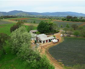 Schmidts Strawberry Winery - Accommodation QLD