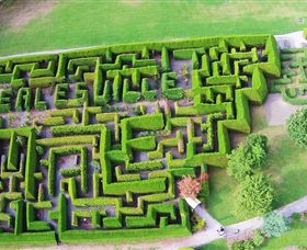 Hedgend Maze and Healesville Laser Sport - Accommodation QLD
