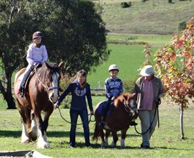 Bathurst Farm Experience - Accommodation QLD