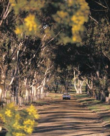 Albert Facey Heritage Trail - Accommodation QLD
