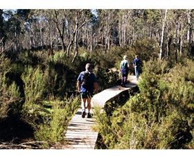 Hume and Hovell Walking Track - Henry Angel Trackhead - Accommodation QLD