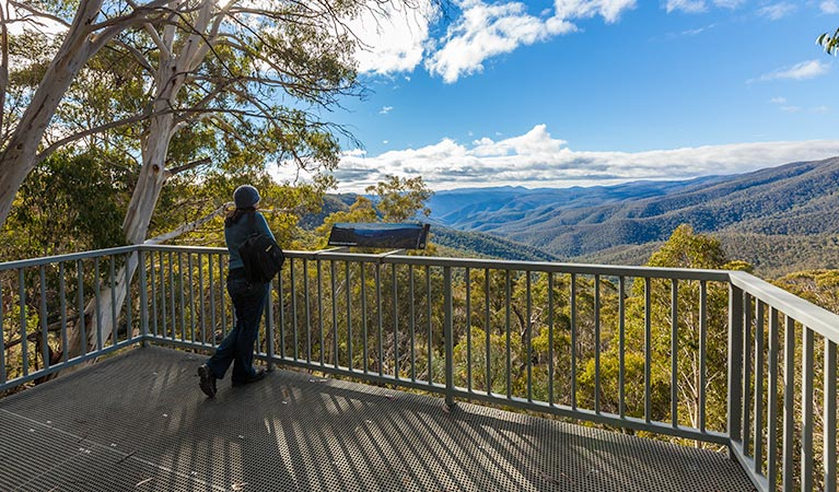 Wallace Creek lookout - Accommodation QLD