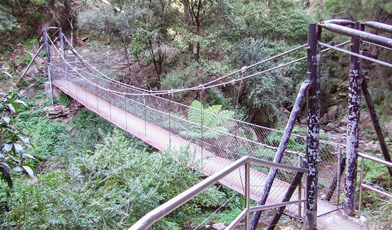 Jenolan River walking track - Accommodation QLD