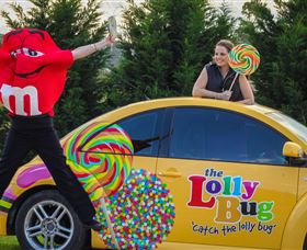 The Lolly Bug - Accommodation QLD