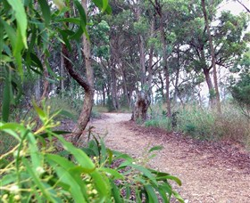 Mount Mutton Walking Trail