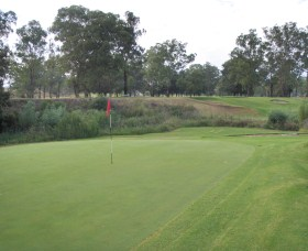 Muswellbrook Golf Club - Accommodation QLD