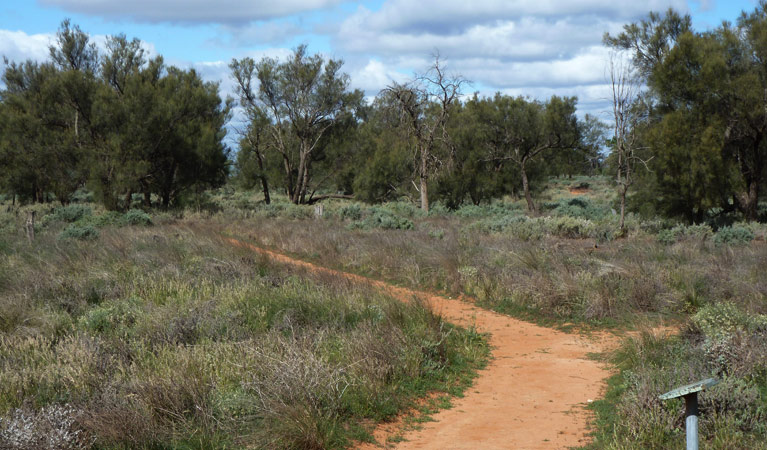 Grasslands Nature trail - Accommodation QLD