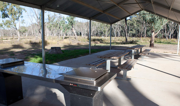 Yanga Woolshed picnic area - Accommodation QLD