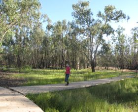 Ben Scott Memorial Bird Trail - Accommodation QLD