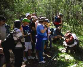 Warrumbungle National Park Discovery Program - Accommodation QLD