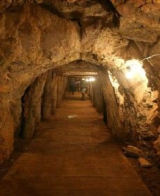 Wellington Caves and Phosphate Mine - Accommodation QLD