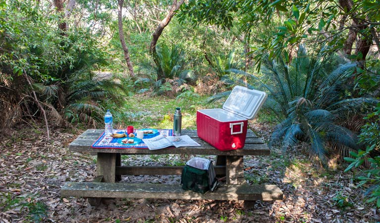 Little Llangothlin picnic area - Accommodation QLD