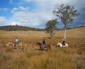 Chapman Valley Horse Riding - Accommodation QLD