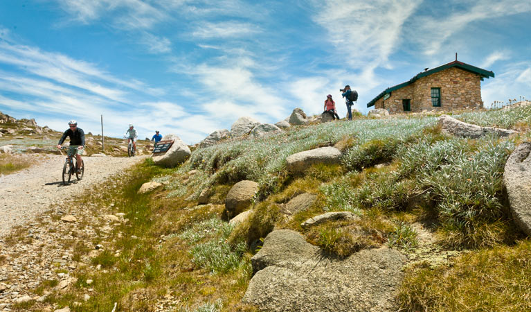 Mount Kosciuszko Summit walk - Accommodation QLD