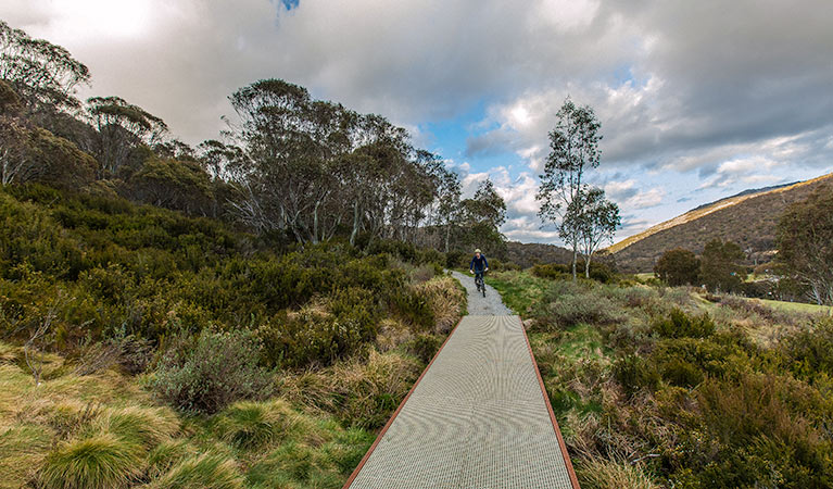 Thredbo Valley track - Accommodation QLD