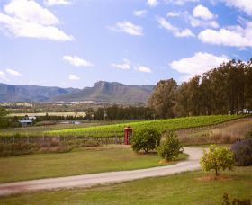 Catherine Vale Wines - Accommodation QLD