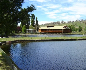 Gaden Trout Hatchery - Accommodation QLD