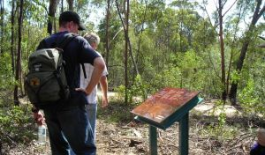 Finchley cultural walk - Accommodation QLD