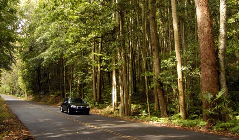 Greater Blue Mountains drive - Accommodation QLD
