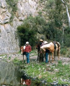 Yarramba Horse Riding - Accommodation QLD