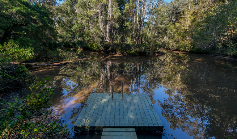 Brimbin Nature Reserve - Accommodation QLD