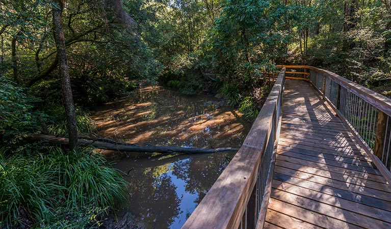 Ms Kellys walking track - Accommodation QLD