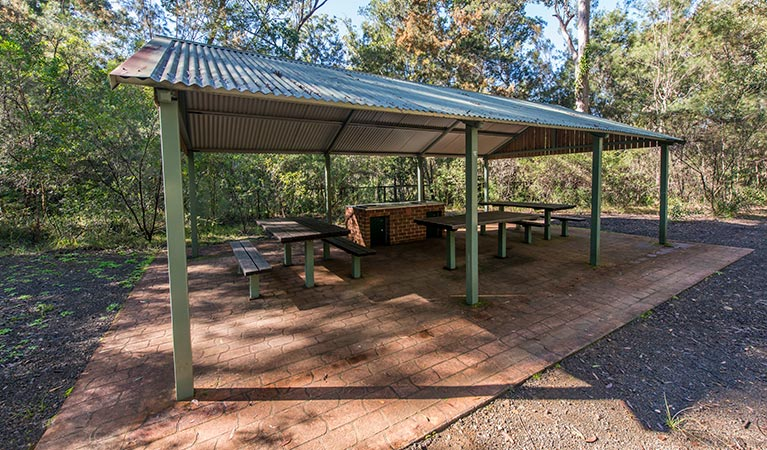 Brimbin picnic area - Accommodation QLD
