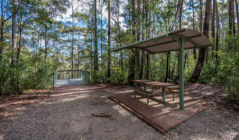 Big Nellie lookout and picnic area - Accommodation QLD