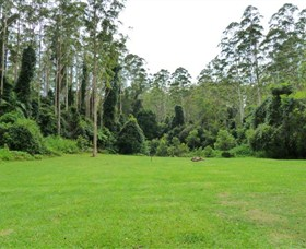 Kerewong State Forest - Accommodation QLD