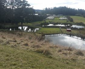 Guide Falls Farm - Accommodation QLD